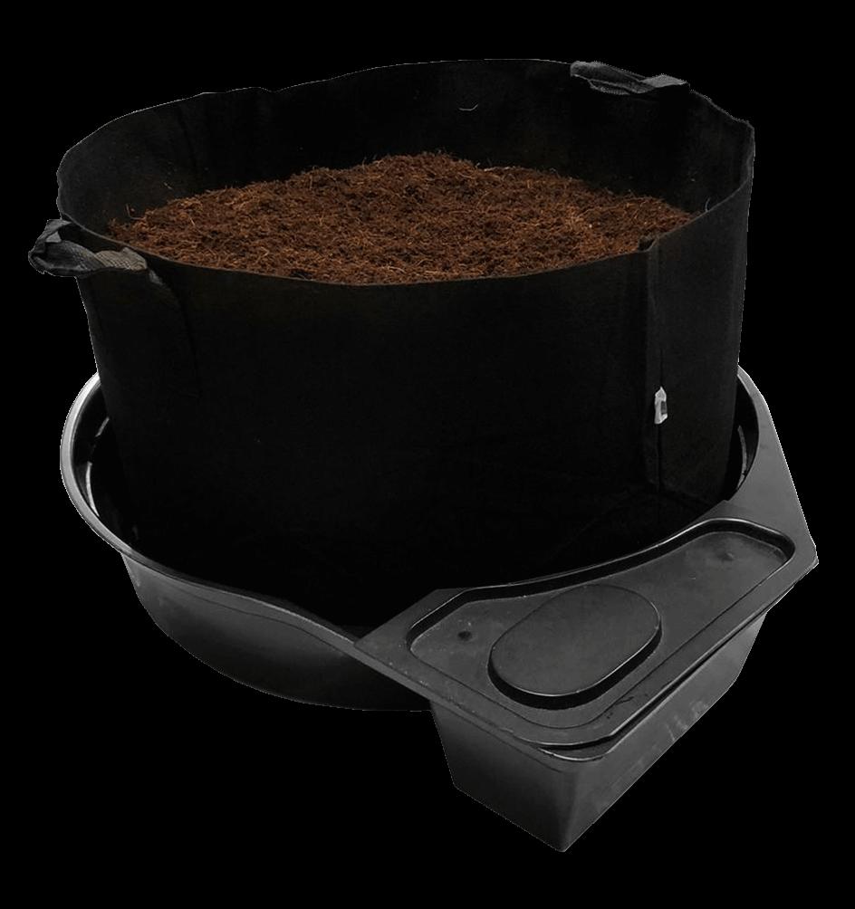 Mega Pot Cloth Pot with soil