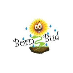 Born 2 Bud Hydro - MegaPot Supplier